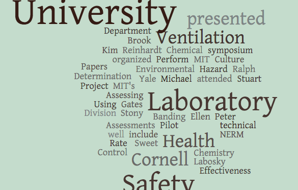 DCHAS papers at NERM 2013